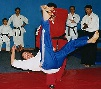 martial art throw
